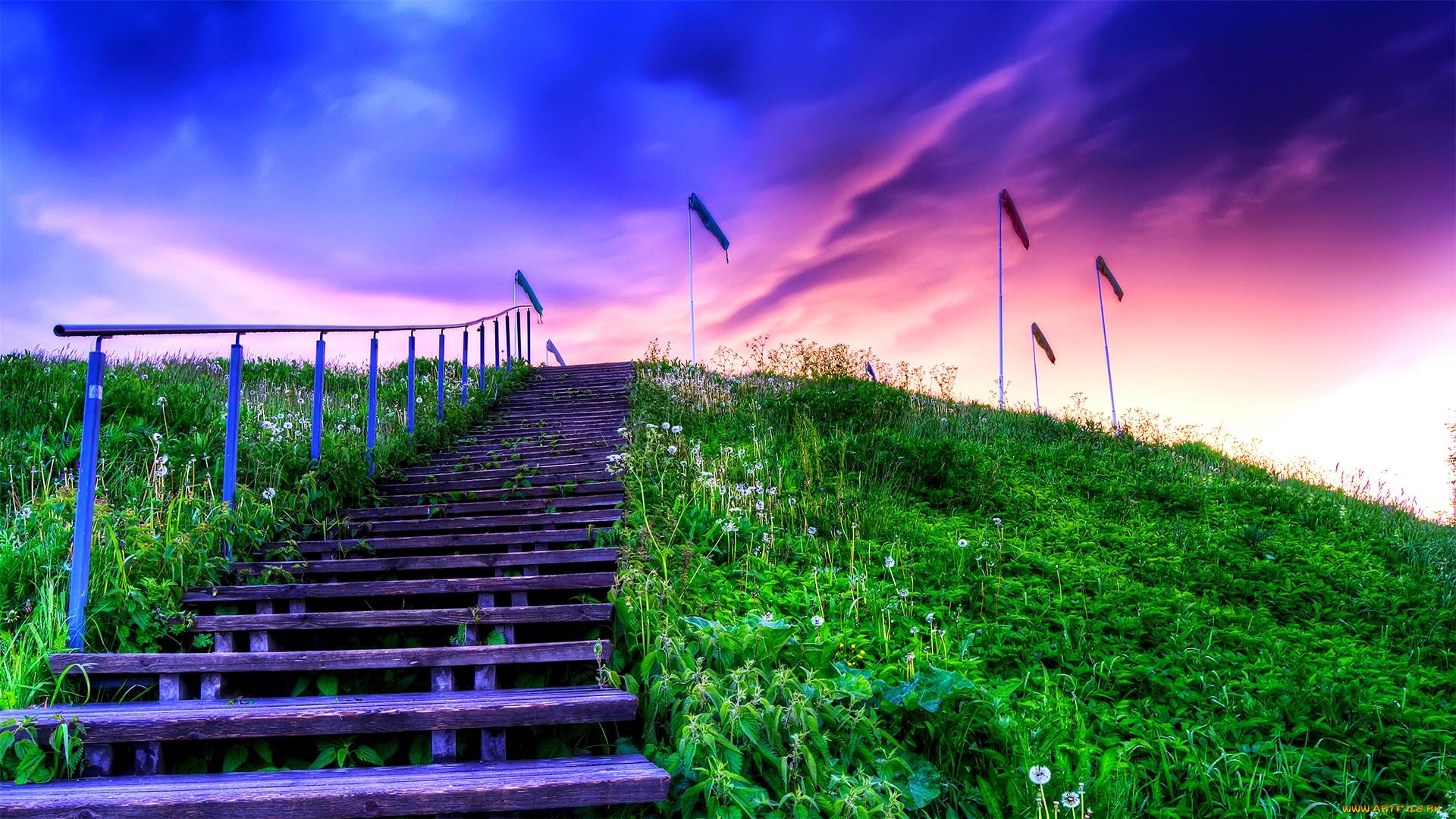 Картинка жизнь это лестница